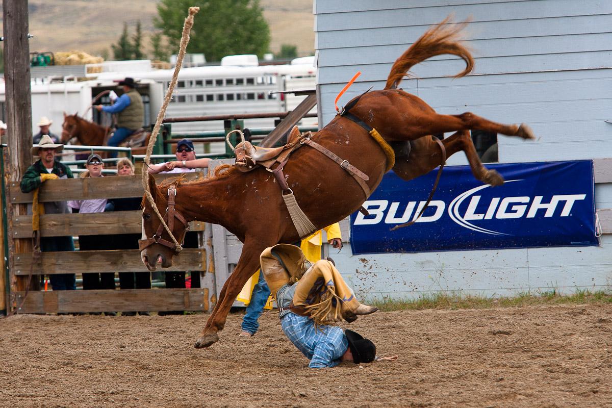 Rodeo Jason Savage Photography