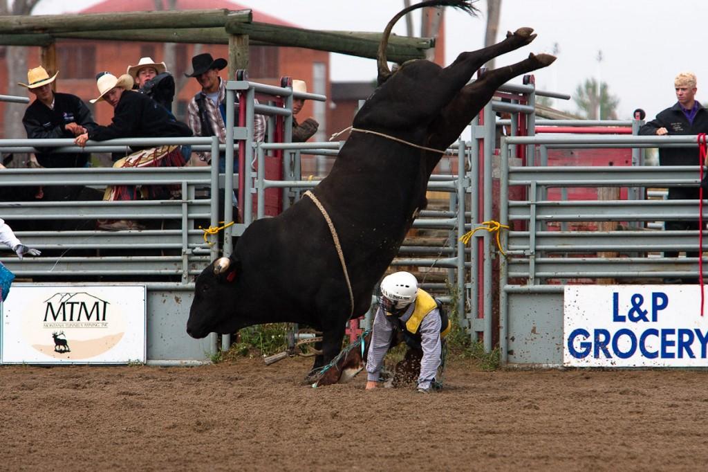 Montana Bull Riding