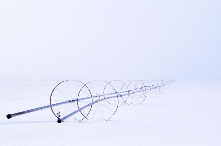 Winter Irrigation